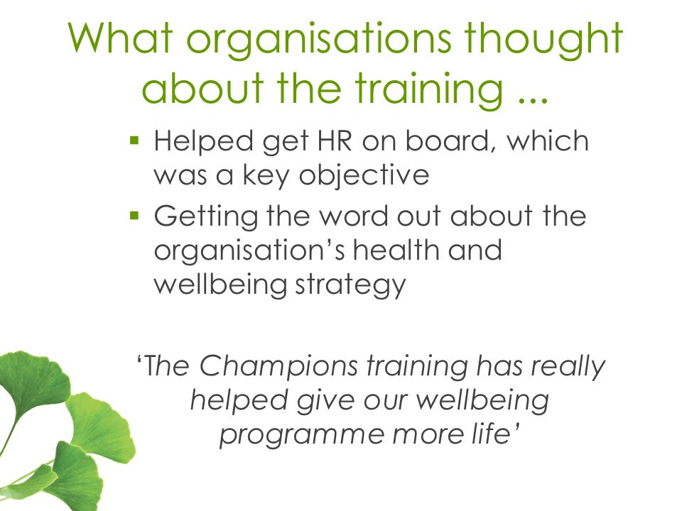 What organisations thought about the training...