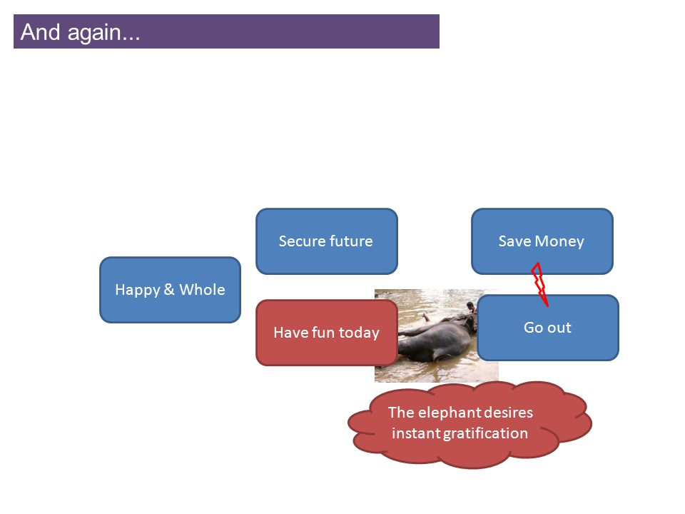 And again... Save MoneySecure future Have fun today Go out Happy & Whole The elephant desires instant gratification