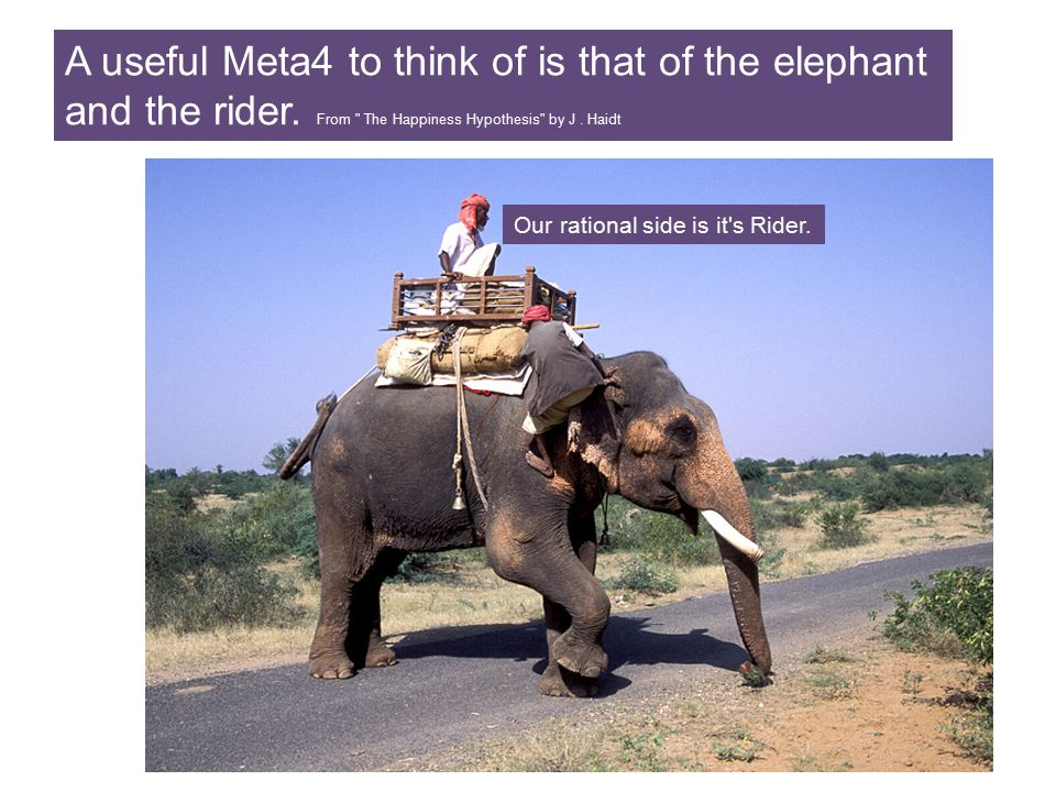 A useful Meta4 to think of is that of the elephant and the rider.