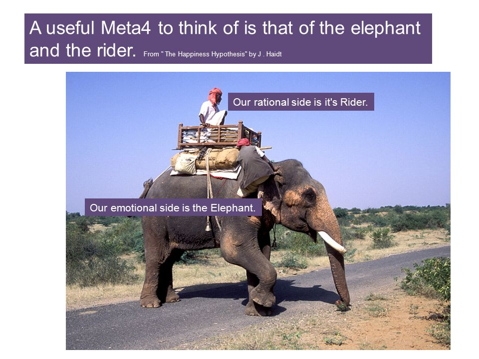 A useful Meta4 to think of is that of the elephant and the rider. From