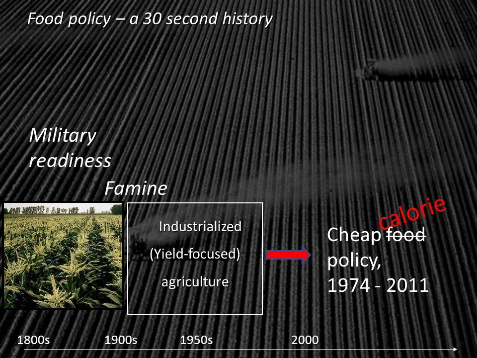 U.S. food policy: Health externalities