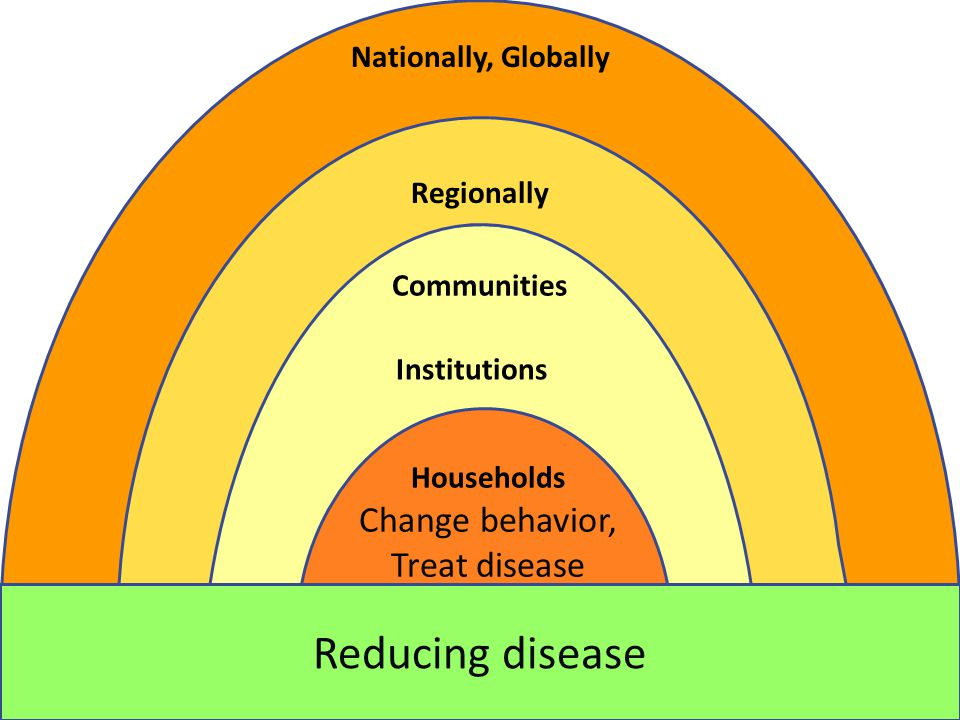 Change behavior, Treat disease Changing environments / Promoting health Reducing disease Households Institutions Communities Regionally Nationally, Globally