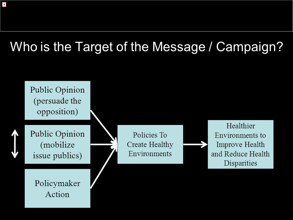 Who is the Target of the Message / Campaign.
