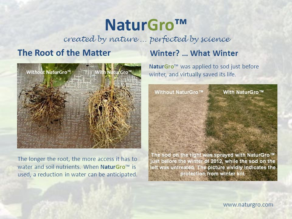 NaturGro™ created by nature … perfected by science www.naturgro.com The Root of the Matter Winter.