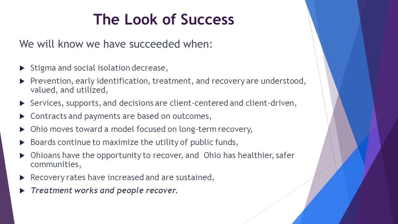 The Look of Success We will know we have succeeded when:  Stigma and social isolation decrease,  Prevention, early identification, treatment, and re