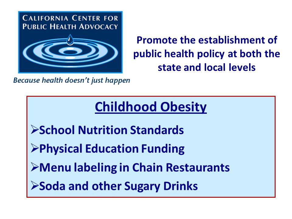 Promote the establishment of public health policy at both the state and local levels Childhood Obesity  School Nutrition Standards  Physical Education Funding  Menu labeling in Chain Restaurants  Soda and other Sugary Drinks