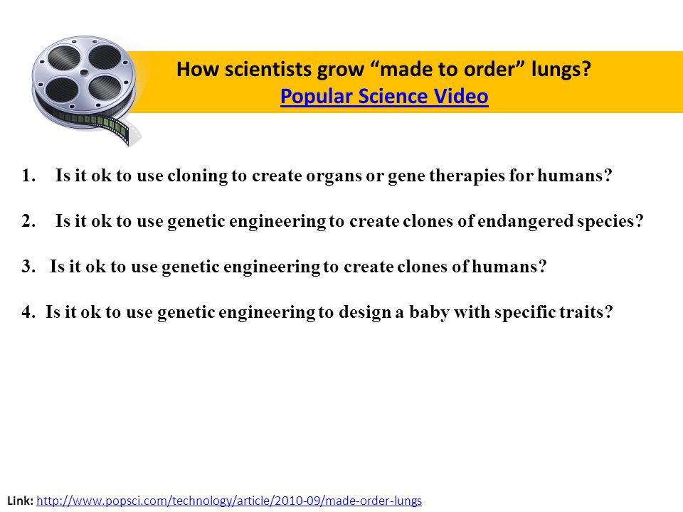 How scientists grow made to order lungs.