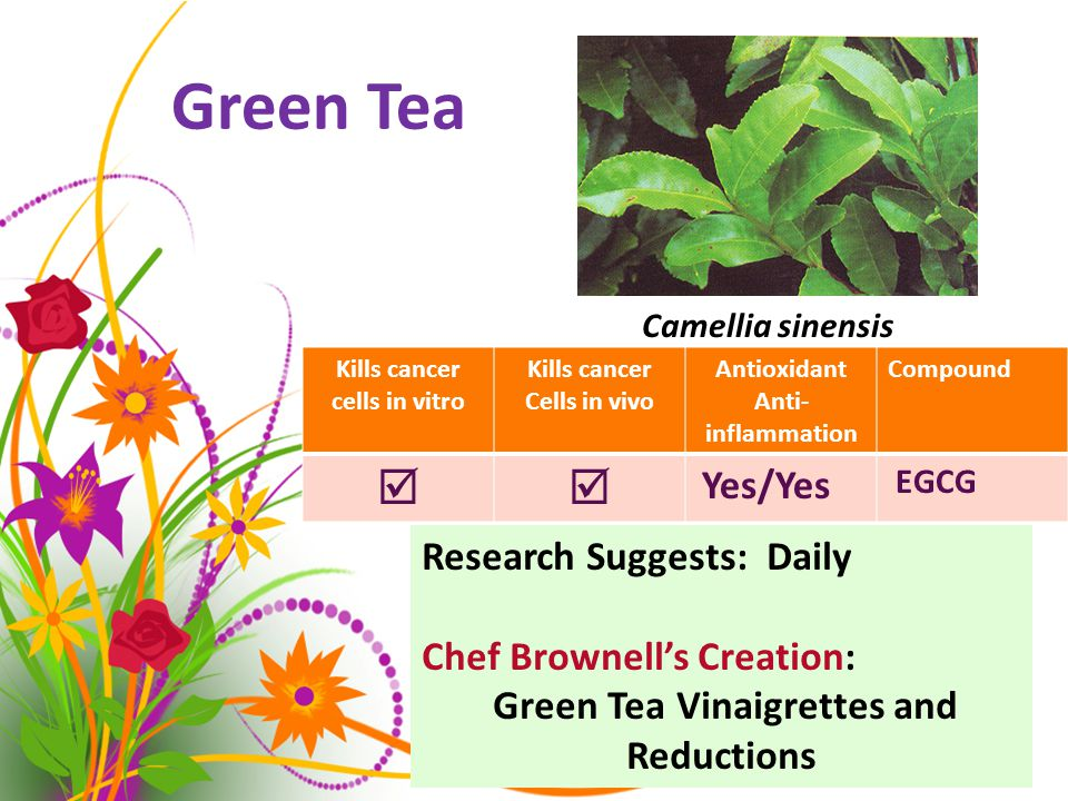 Green Tea Camellia sinensis Kills cancer cells in vitro Kills cancer Cells in vivo Antioxidant Anti- inflammation Compound  Yes/Yes EGCG Research Suggests: Daily Chef Brownell's Creation: Green Tea Vinaigrettes and Reductions Camellia sinensis
