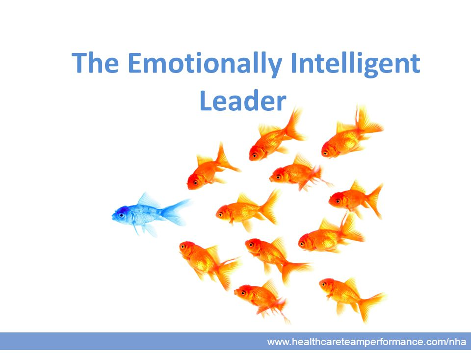www.healthcareteamperformance.com/nha The Emotionally Intelligent Leader