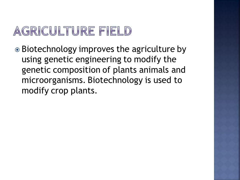  Biotechnology improves the agriculture by using genetic engineering to modify the genetic composition of plants animals and microorganisms.