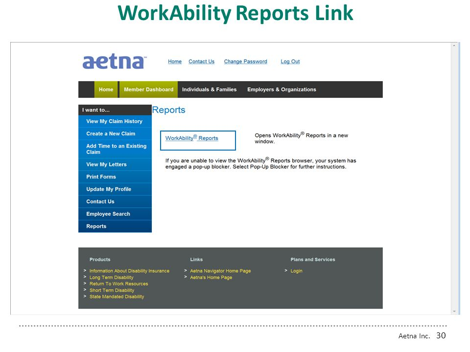 Aetna Inc. 29 Employer Reports Access Reports