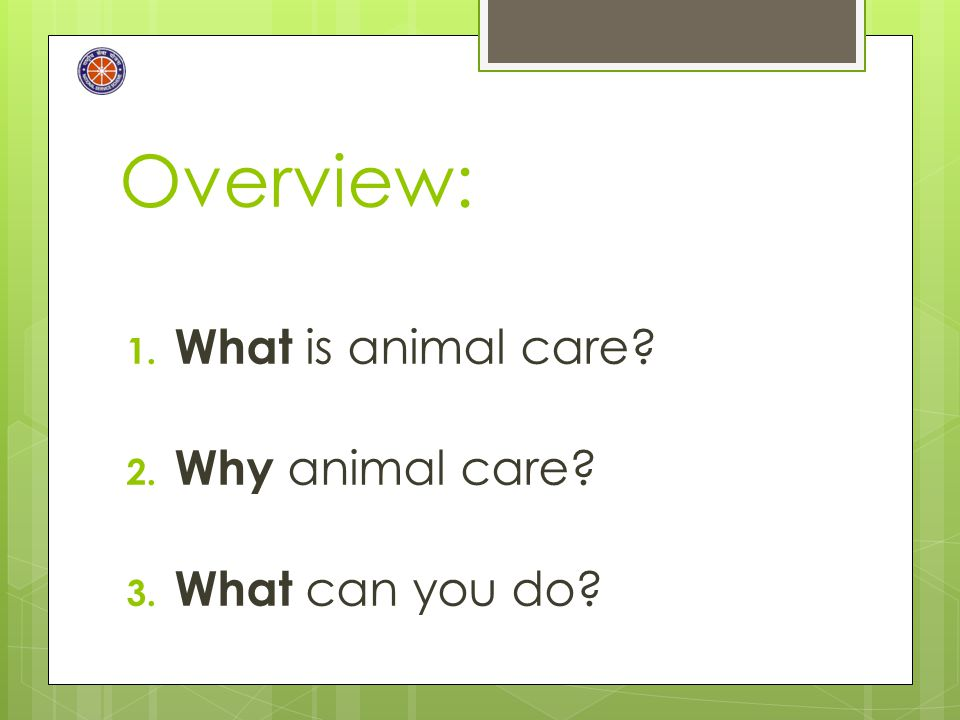 Overview: 1. What is animal care? 2. Why animal care? 3. What can you do?