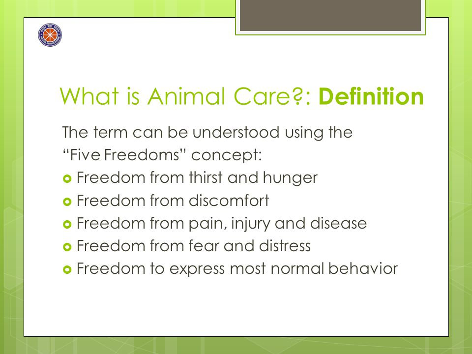 "What is Animal Care?: Definition The term can be understood using the ""Five Freedoms"" concept:  Freedom from thirst and hunger  Freedom from discomf"