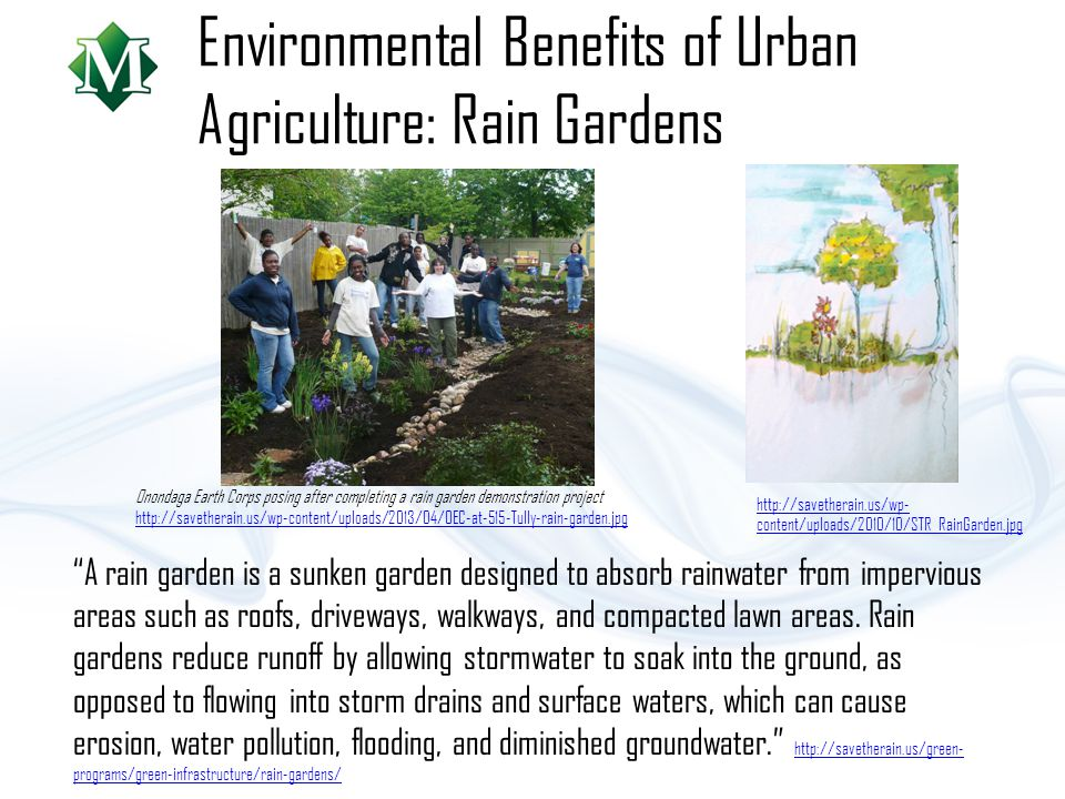Environmental Benefits of Urban Agriculture: Rain Gardens A rain garden is a sunken garden designed to absorb rainwater from impervious areas such as roofs, driveways, walkways, and compacted lawn areas.