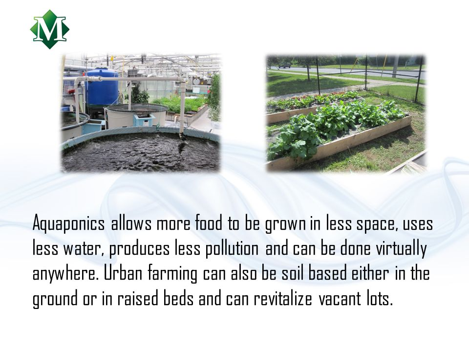 Aquaponics allows more food to be grown in less space, uses less water, produces less pollution and can be done virtually anywhere.