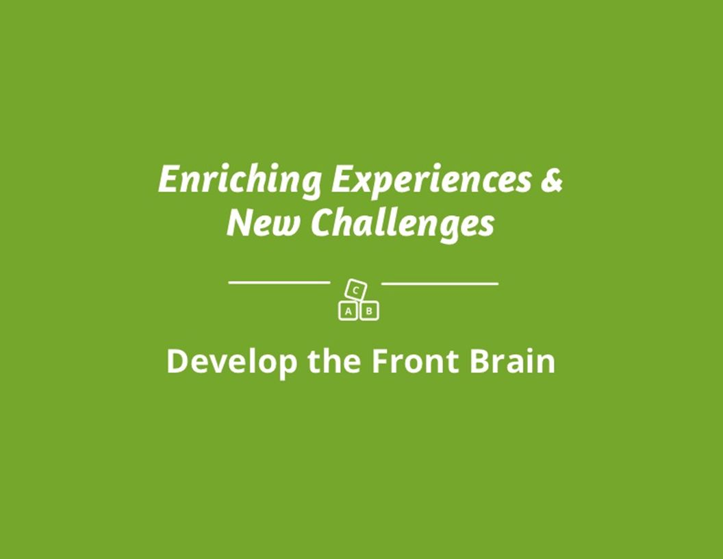 Enriching Experiences & New Challenges Develop the Front Brain