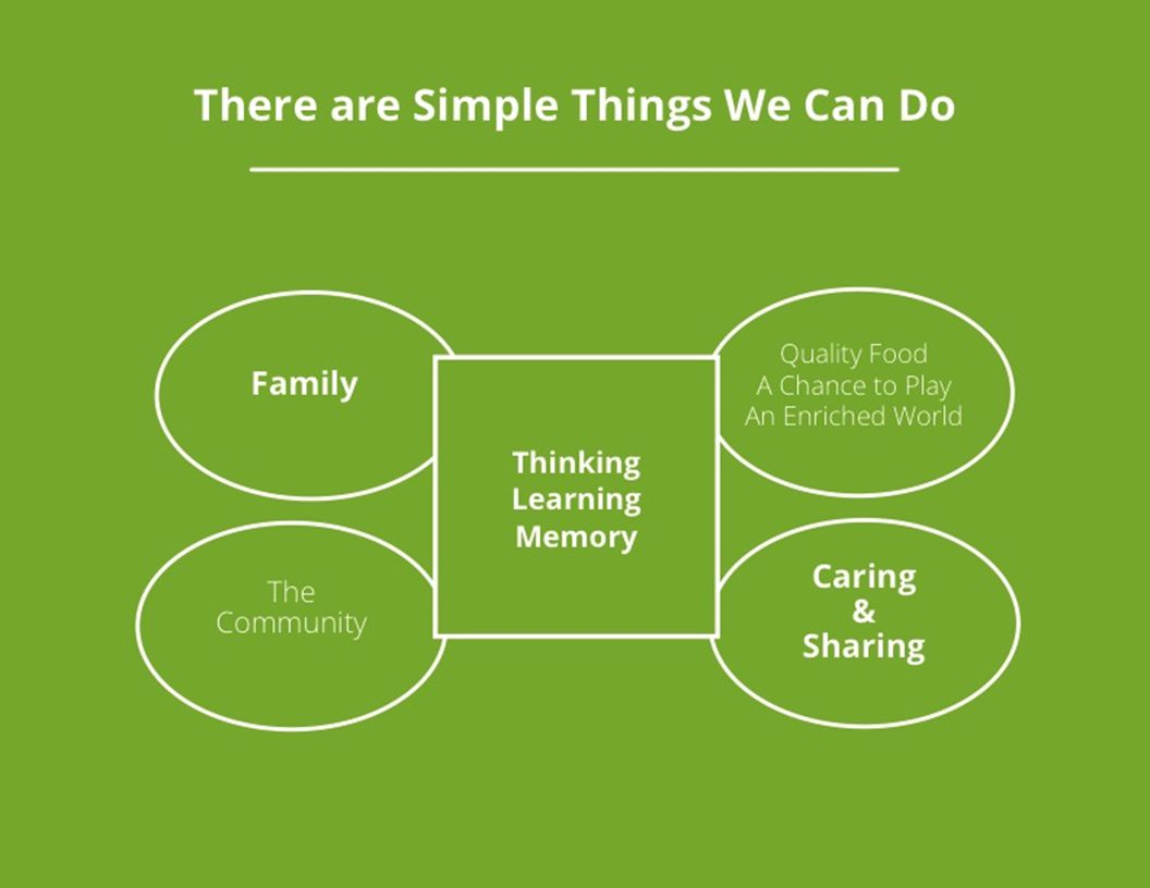 Family Caring & Sharing The Community Quality Food A Chance to Play An Enriched World There are Simple Things We Can Do Thinking Learning Memory