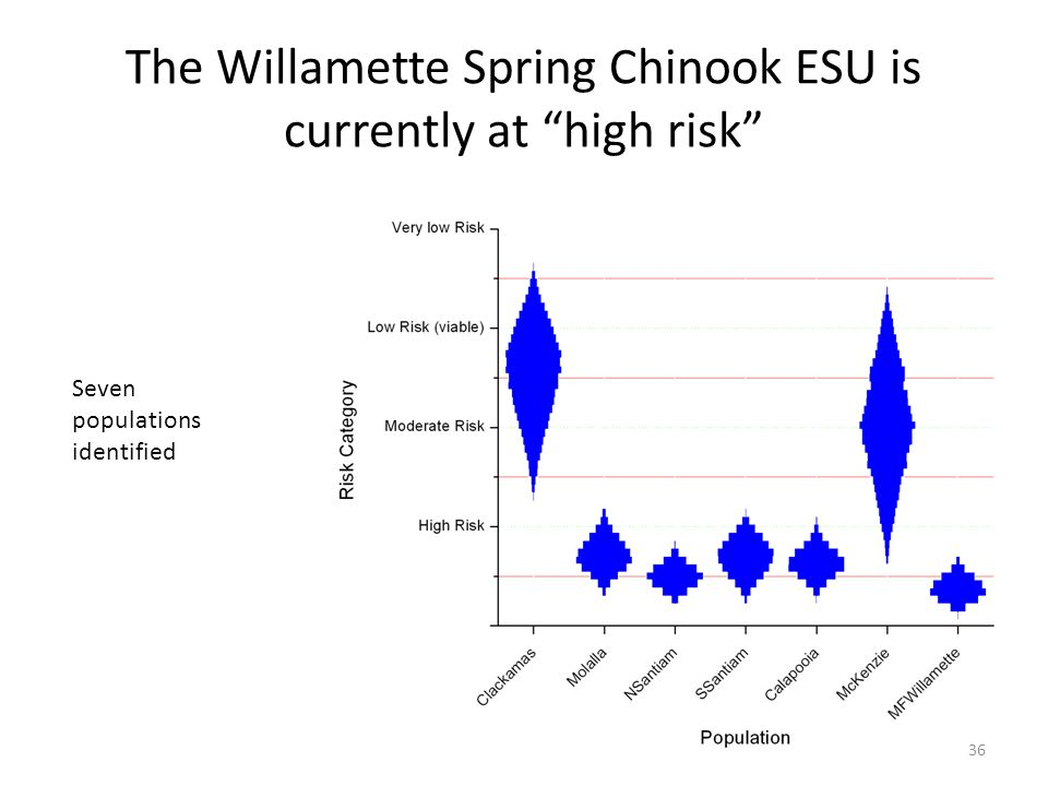 The Willamette Spring Chinook ESU is currently at high risk Seven populations identified 36