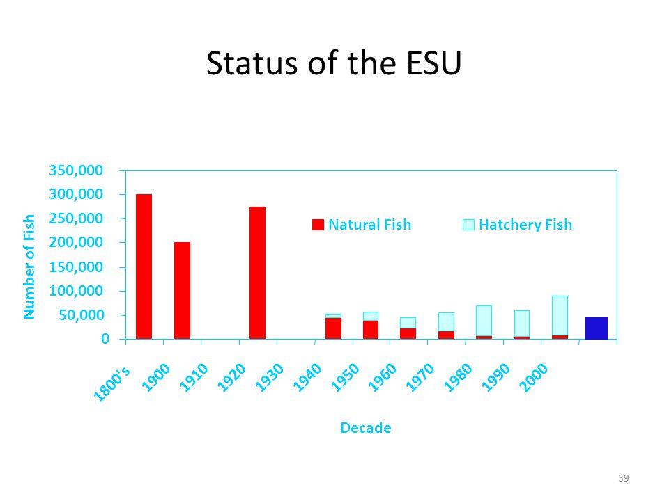Status of the ESU 0 50,000 100,000 150,000 200,000 250,000 300,000 350,000 1800 s 19001910192019301940195019601970198019902000 Decade Number of Fish Natural FishHatchery Fish 39