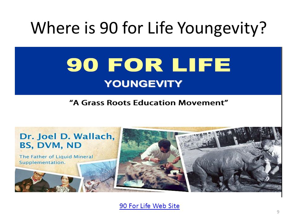 Where is 90 for Life Youngevity 9 90 For Life Web Site