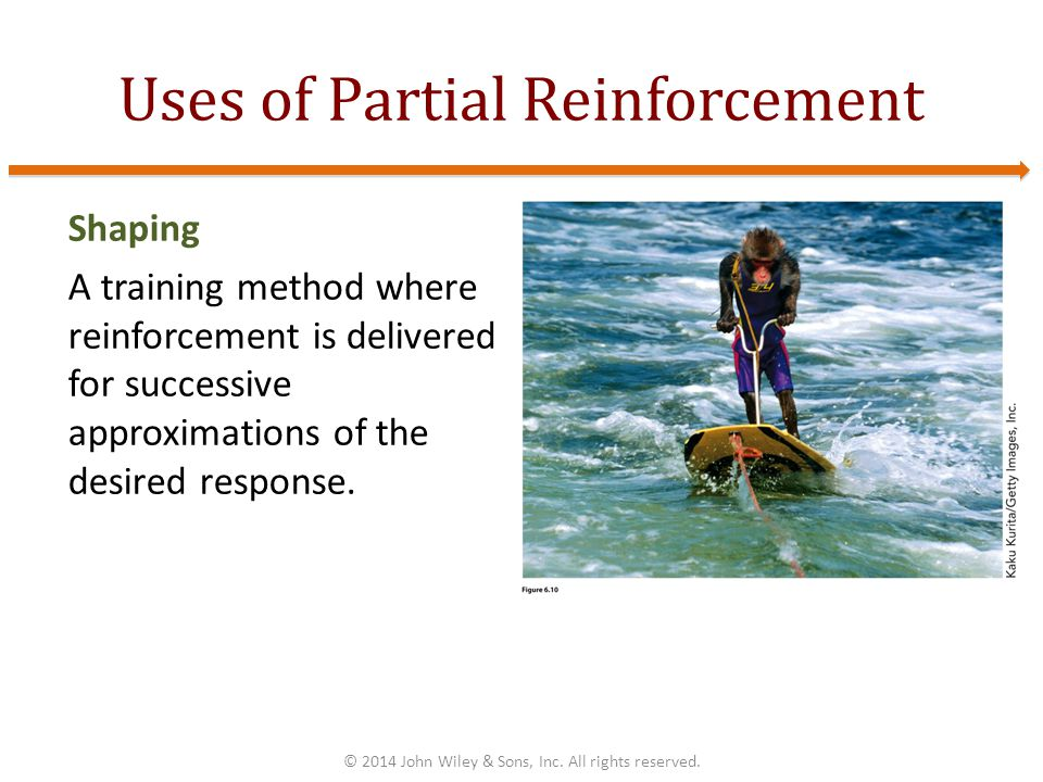 Uses of Partial Reinforcement Shaping A training method where reinforcement is delivered for successive approximations of the desired response.