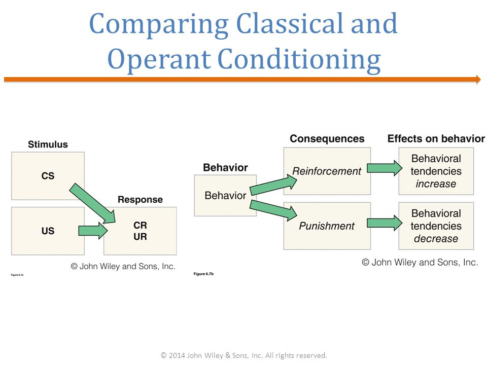 Comparing Classical and Operant Conditioning © 2014 John Wiley & Sons, Inc. All rights reserved.