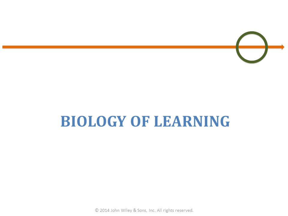 BIOLOGY OF LEARNING © 2014 John Wiley & Sons, Inc. All rights reserved.