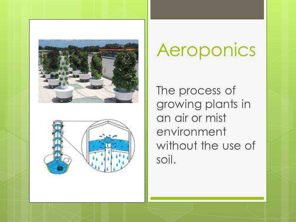 Aeroponics The process of growing plants in an air or mist environment without the use of soil.