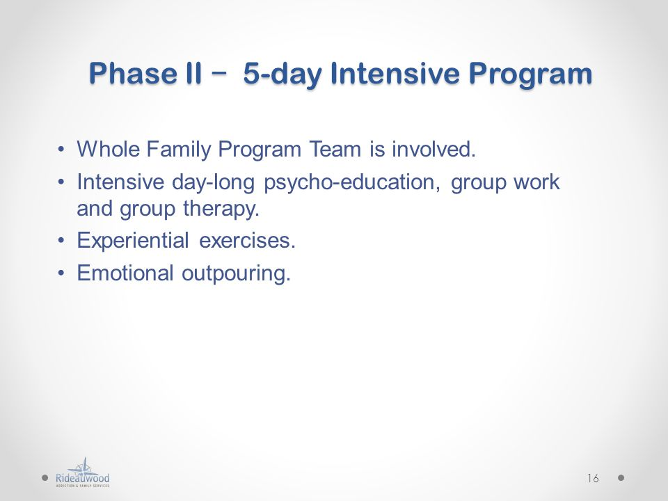 Phase II − 5-day Intensive Program Whole Family Program Team is involved.