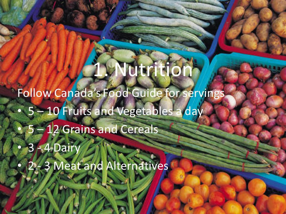 1. Nutrition Follow Canada's Food Guide for servings 5 – 10 Fruits and Vegetables a day 5 – 12 Grains and Cereals 3 - 4 Dairy 2 - 3 Meat and Alternati