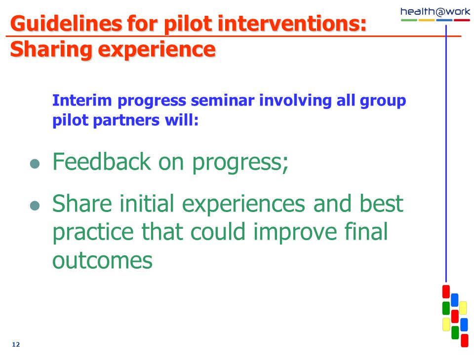 12 Guidelines for pilot interventions: Sharing experience Interim progress seminar involving all group pilot partners will: Feedback on progress; Share initial experiences and best practice that could improve final outcomes