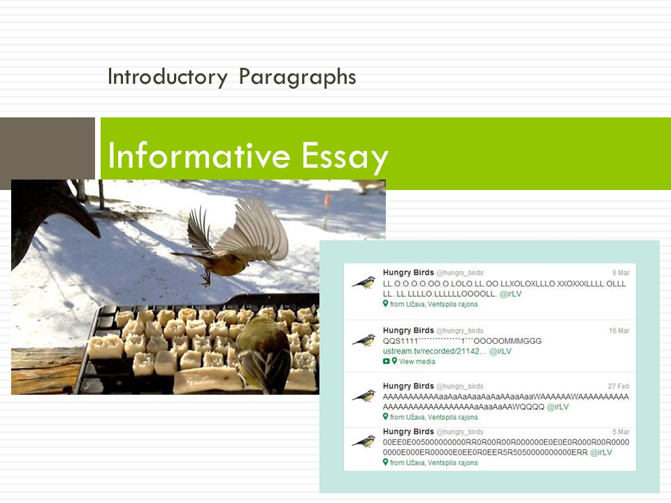 Introductory Paragraphs Informative Essay