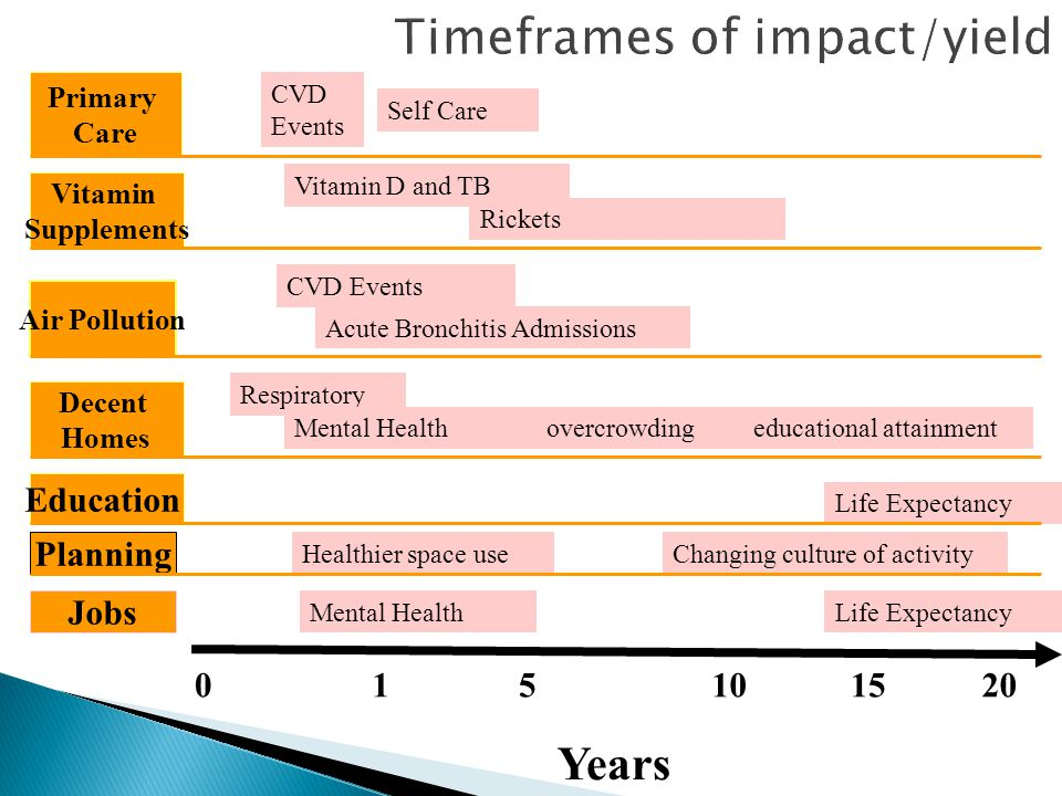 Timeframes of impact/yield Years 0151015 Planning Education Vitamin Supplements Air Pollution Decent Homes Jobs Primary Care 20 CVD Events Self Care V