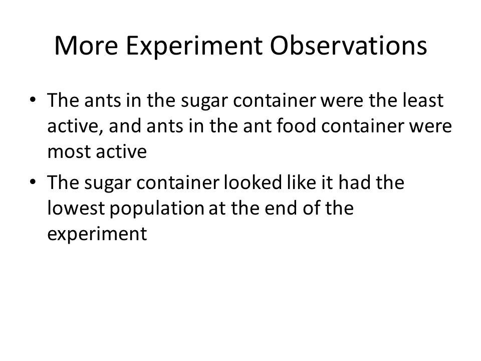 More Experiment Observations The ants in the sugar container were the least active, and ants in the ant food container were most active The sugar cont