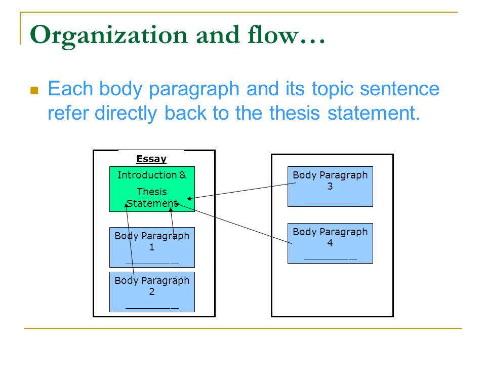 Body Paragraphs: Connection and Conciseness Within each of your body paragraphs, examples, evidence, etc.