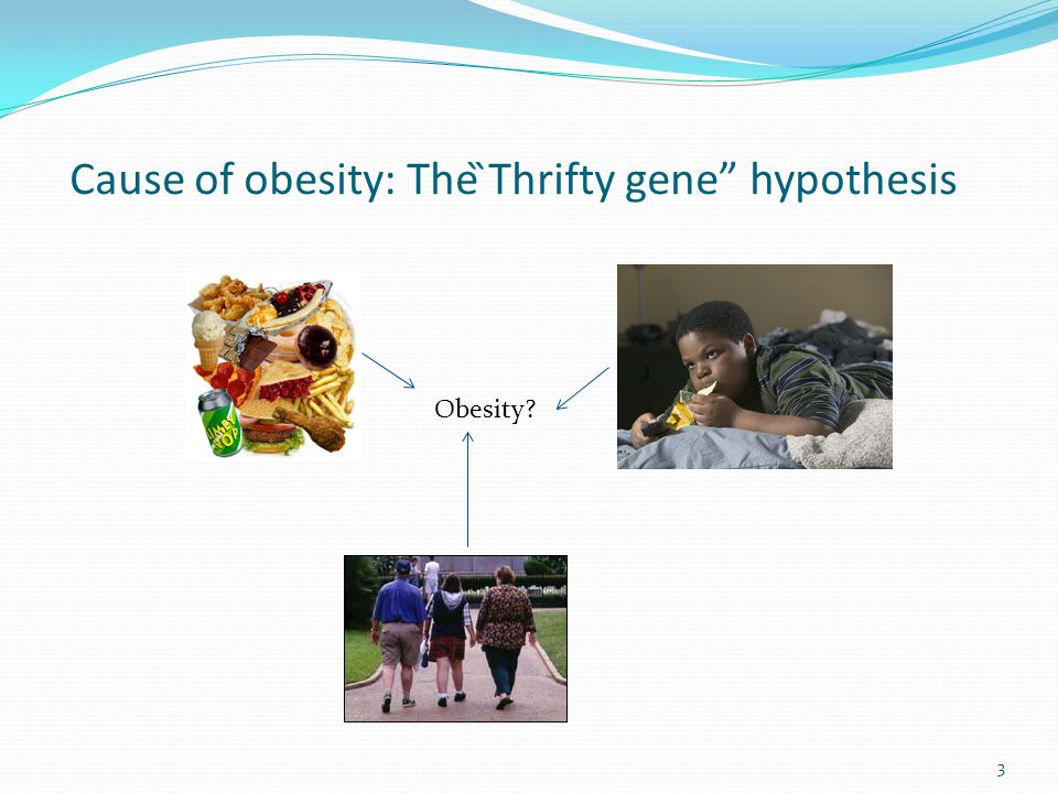 Cause of obesity: The ̏Thrifty gene hypothesis Obesity 3