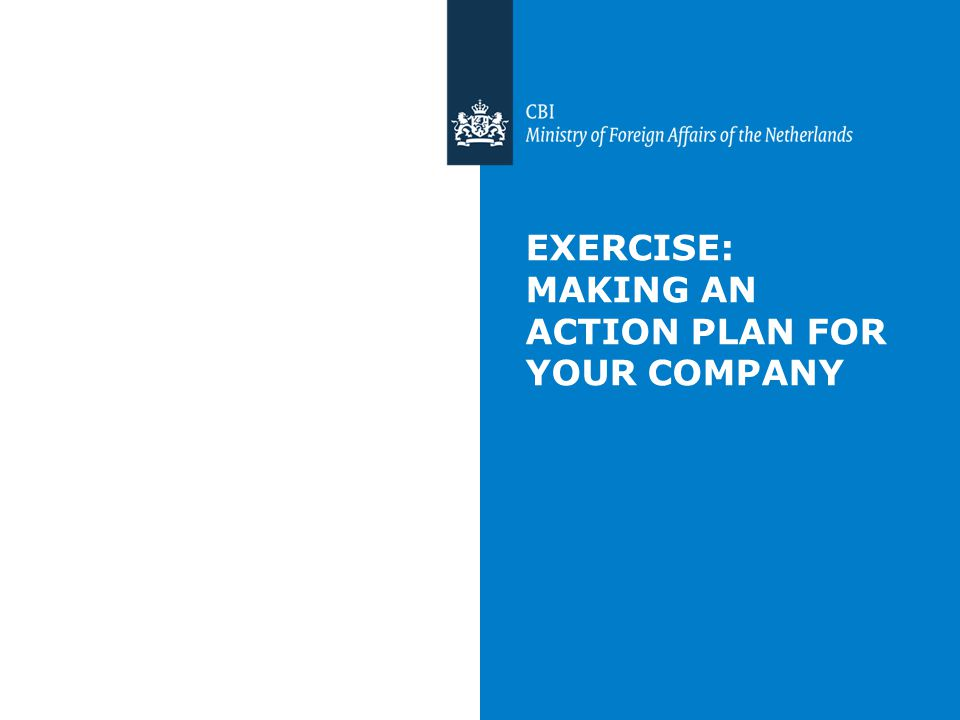 EXERCISE: MAKING AN ACTION PLAN FOR YOUR COMPANY
