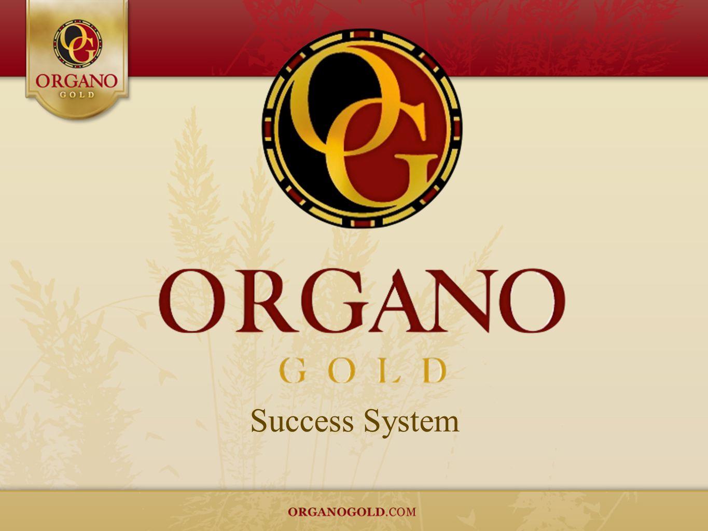 Success System