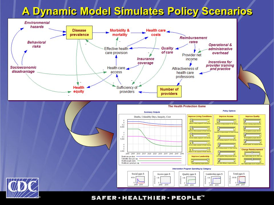 A Dynamic Model Simulates Policy Scenarios