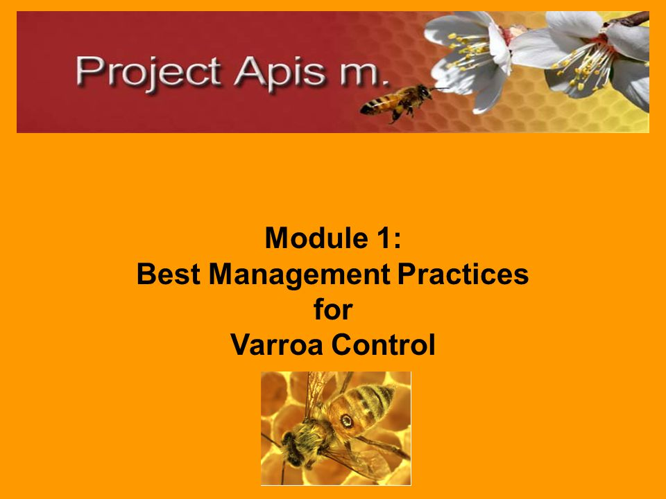 Best Management Practices (BMPs) for Beekeepers Pollinating Agricultural Crops elearning modules