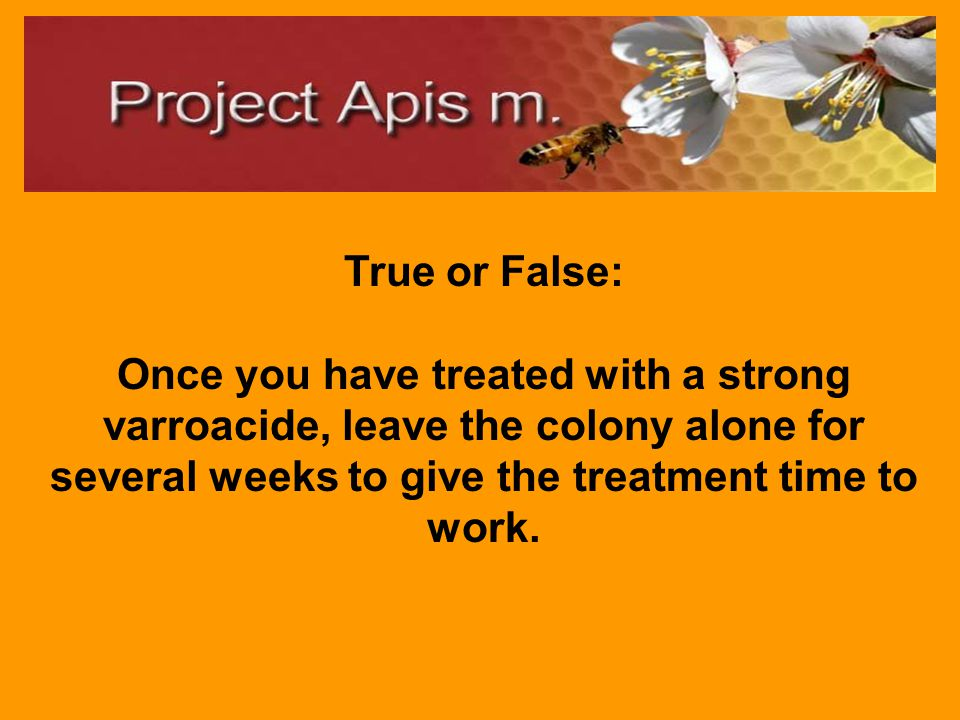 True. Other beekeepers in your area can easily spread Varroa to your hives.
