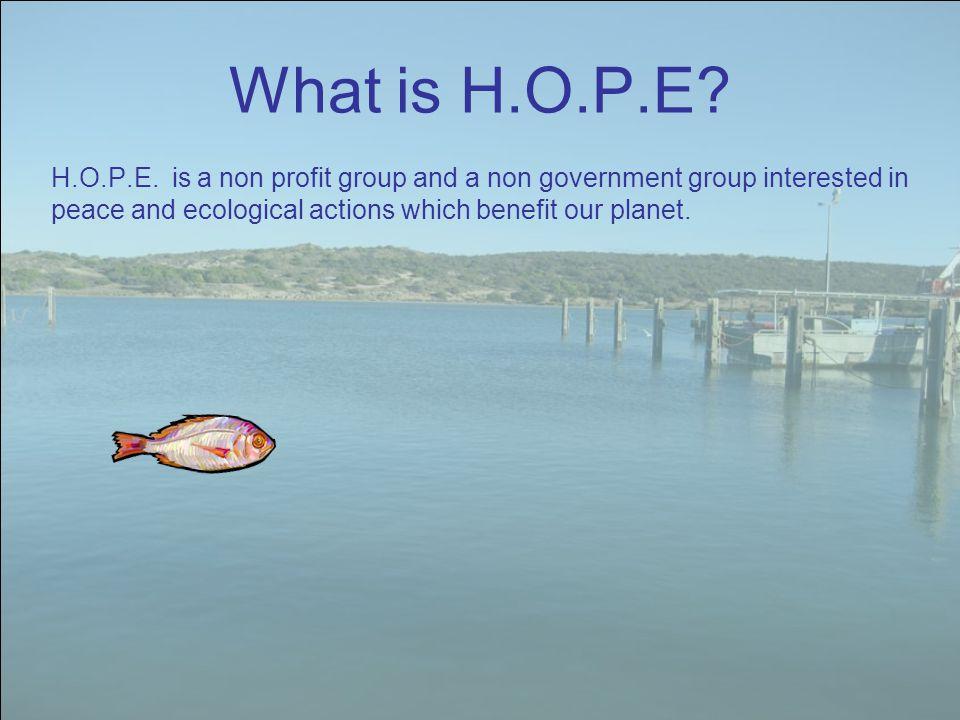 What is H.O.P.E. H.O.P.E.