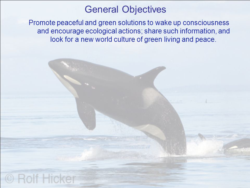 General Objectives Promote peaceful and green solutions to wake up consciousness and encourage ecological actions; share such information, and look for a new world culture of green living and peace.