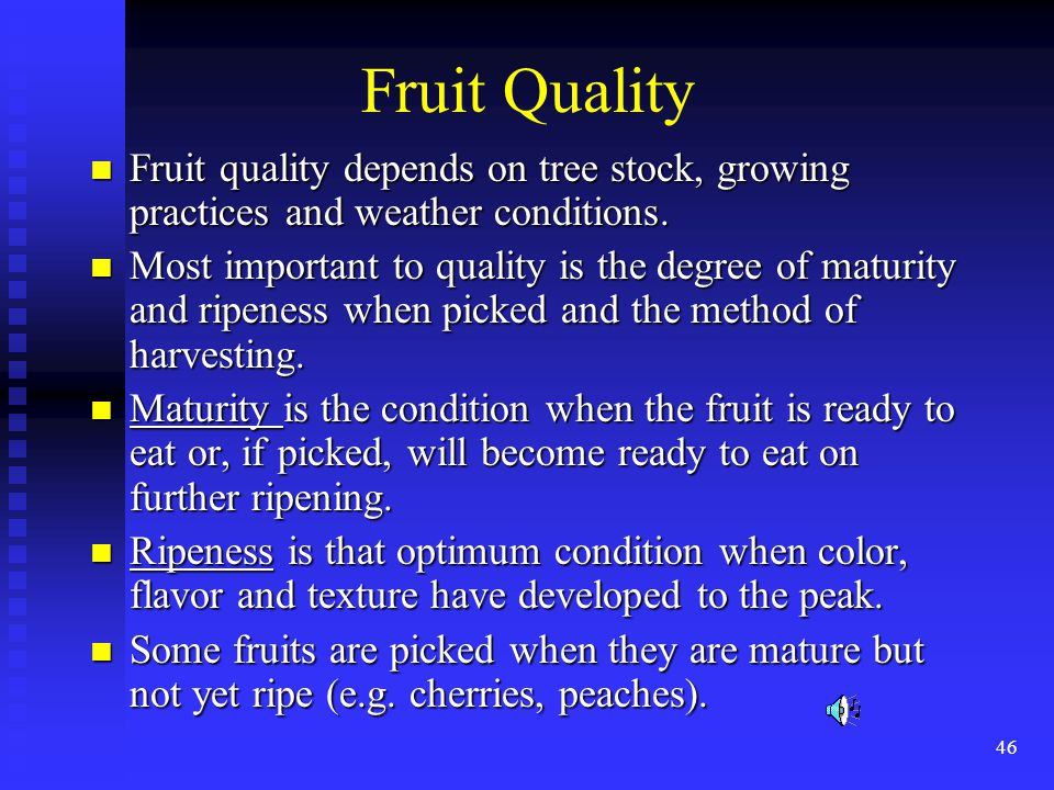 46 Fruit Quality Fruit quality depends on tree stock, growing practices and weather conditions. Fruit quality depends on tree stock, growing practices