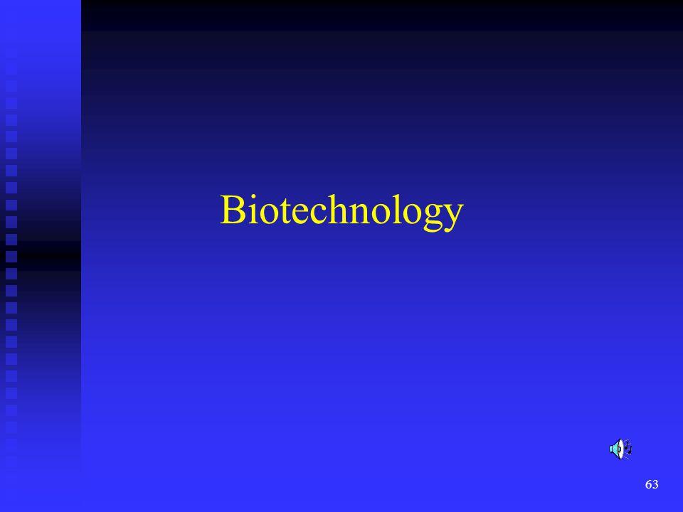 63 Biotechnology