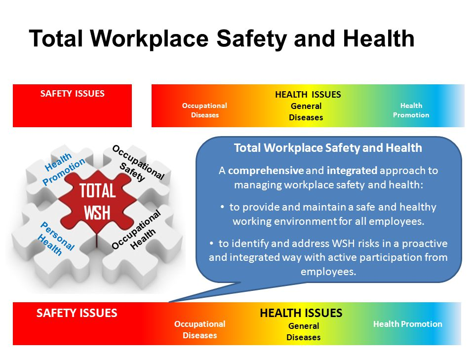 Total Workplace Safety and Health SAFETY ISSUESHEALTH ISSUES Occupational Diseases General Diseases Health Promotion SAFETY ISSUES HEALTH ISSUES Occup