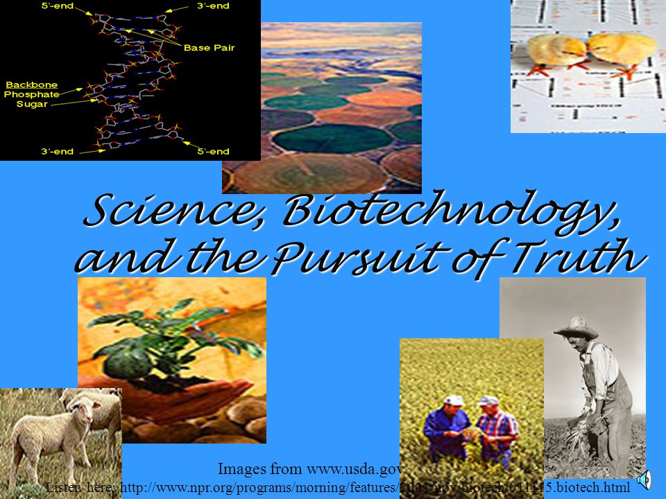 Science, Biotechnology, and the Pursuit of Truth Listen here: http://www.npr.org/programs/morning/features/2001/nov/biotech/011115.biotech.html Images from www.usda.gov