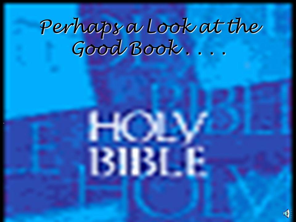 HOW SHOULD CHRISTIANS RESPOND