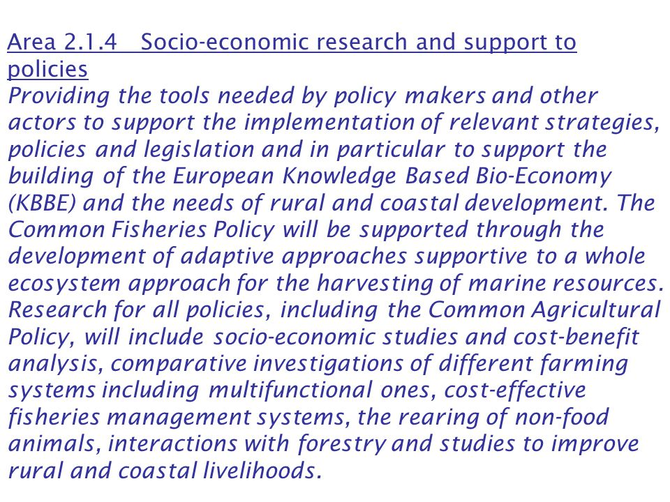 Area 2.1.4 Socio-economic research and support to policies Providing the tools needed by policy makers and other actors to support the implementation