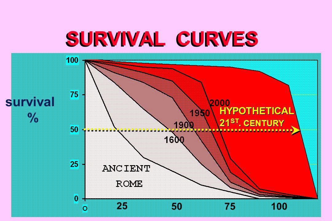SURVIVAL CURVES 7550 25 100 survival % HYPOTHETICAL 21 ST. CENTURY